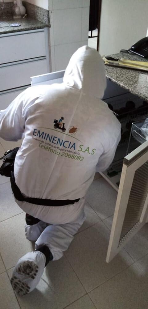 EMINENCIA S.A.S.